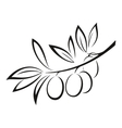 Olive Branch with Berries Black Icon vector image vector image