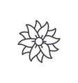 petunia line icon concept petunia flat vector image vector image