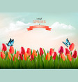 spring nature background with colorful flowers vector image