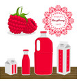 the theme raspberry vector image vector image