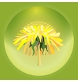 with dandelion vector image vector image