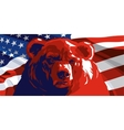 Angry Bear and American flag vector image vector image