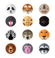 animal head icons vector image vector image