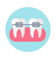brackets on teeth icon flat style dentistry vector image vector image