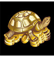 collection mascots bronze turtle on coins vector image vector image