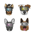 dog wearing virtual reality glasses year d vector image
