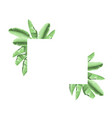 summer tropical frame with banana leaves vector image vector image