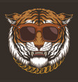 tiger head eyeglasses vector image vector image