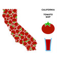 california map collage of tomato vector image vector image