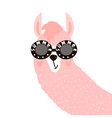 cute lama face in glasses childish print vector image