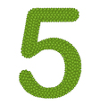 Four Leaf Clover of Alphabet Numbers 5 vector image
