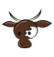image cow head or color vector image