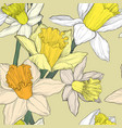 jonquil daffodil narcissus seamless pattern vector image