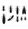 set black silhouettes termites on a white vector image vector image
