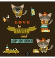 set cats travelers vector image vector image