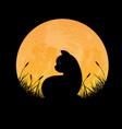 silhouette cat sitting in full moon night vector image