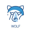 wolf logo design blue label badge or emblem with vector image