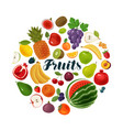 fruits and berries natural food agriculture vector image vector image