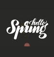 hand drawn lettering hello spring elegant modern vector image vector image