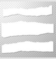 long horizontal torned off pieces of paper empty vector image