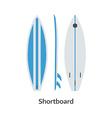 Shortboard Surfing Desk vector image vector image
