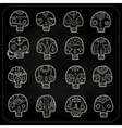 Skulls chalk set vector image vector image