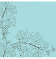 Vintage with grape branch vector image vector image