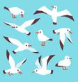 cartoon atlantic seabird seagulls flying in blue vector image