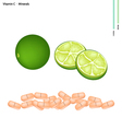 Green Limes with Vitamin C and Minerals vector image vector image