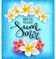hello summer calligraphic inscription vector image