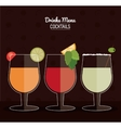 set of Cocktail drink icons with citrus fruits in vector image vector image