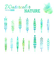 Set of watercolor leaves vector image