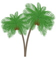 Silhouette palm tree with coconuts vector image vector image
