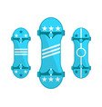skateboards symbols isolated on white set vector image vector image