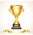 Golden Champions Trophy Cup Image vector image