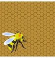 Sweet honeycomb and wasp stinging vector image