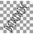 image DNA Drawing on transparency vector image
