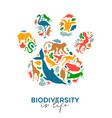 colorful wild animal icon paw print shape isolated vector image