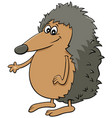 comic hedgehog cartoon animal character