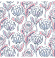 hand drawn protea flower seamless pattern vector image