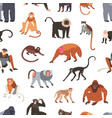 seamless pattern with different species monkeys vector image