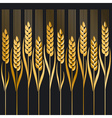 wheat ion black background vector image vector image