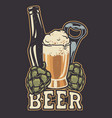 with a bottle beer and hop cones vector image vector image