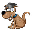 dog mascot character with graduation cap hat vector image vector image