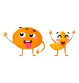 Mandarin Cute fruit character couple vector image vector image