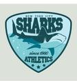 Shark sport emblem vector image vector image