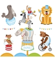 Circus animals perform tricks vector image vector image
