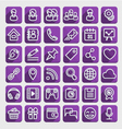 Flat Icons Social Media Purple Set vector image vector image