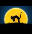 halloween growl black cat moon graveyard vector image vector image