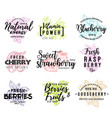 wild and garden berries lettering icons vector image
